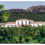 Ruta de los vinos Ribera del Guadiana. 1º