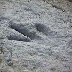 La Rioja: Ruta de los Dinosaurios en Enciso