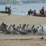 Acapulco, mucho más que Sol y playa