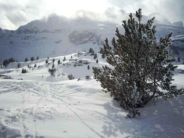 Nieve y Esquí en el Pirineo Aragonés: Estación de Candanchú (Jaca)