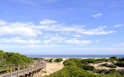 Playas de Alicante: Carabassi y El Rebollo