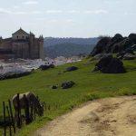 El Monasterio Cartujo de Cazalla de la Sierra y su Hotel Rural