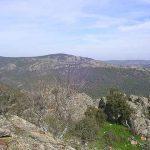 Córdoba. Fin de semana en las Dehesas de Sierra Morena
