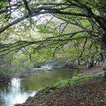 Escapada rural por Madrid: Comarca Sierra Norte
