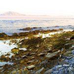 La costa salvaje de Cádiz | Parque Natural del Estrecho
