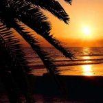 Viaje a Florida, el Estado del Sol