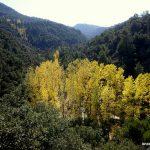Granada rural | Escapada al Parque Natural Sierra de Huétor