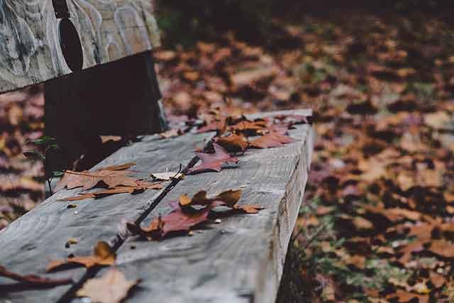 Noviembre | Ofertas fin de semana