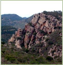 Ecoturismo en Valencia | Fin de semana en el Parque Natural Serra Calderona