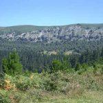Ecoturismo en Bizkaia: Parque Natural de Armañón