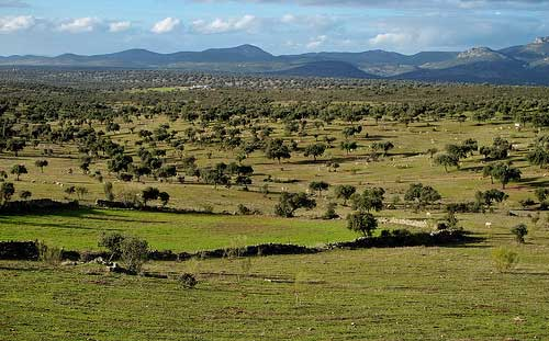 Belalcázar | Turismo rural en la Sierra de Córdoba