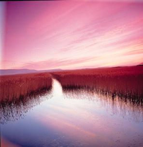 Navarra. Actividades de ocio y deporte en la Laguna de Pitillas