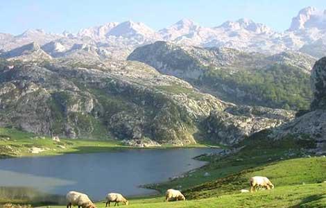 Turismo rural en el Parque Nacional de los Picos de Europa