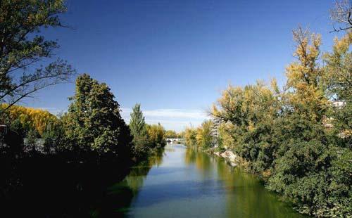 Palencia rural: La ruta de la Vega del Carrión (Castilla y León)