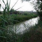 Destinos para el fin de semana: Parque Natural del Turia y rurismo en Valencia