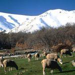 Sierra de Gredos: Escalada y otros deportes como oferta de turismo activo