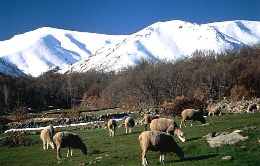 Invierno en la Sierra de Gredos