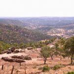 Sierra de Cardeña y Montoro. Fin de semana en el Valle de los Pedroches (Córdoba)